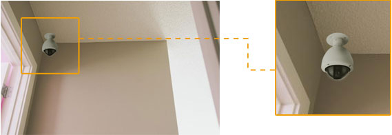 Wall or Ceiling Mounting
