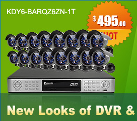 16CH CCTV Surveillance DVR System with 16 Night Vision Security Cameras-1TB Hard Drvie